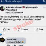 prince gold 2